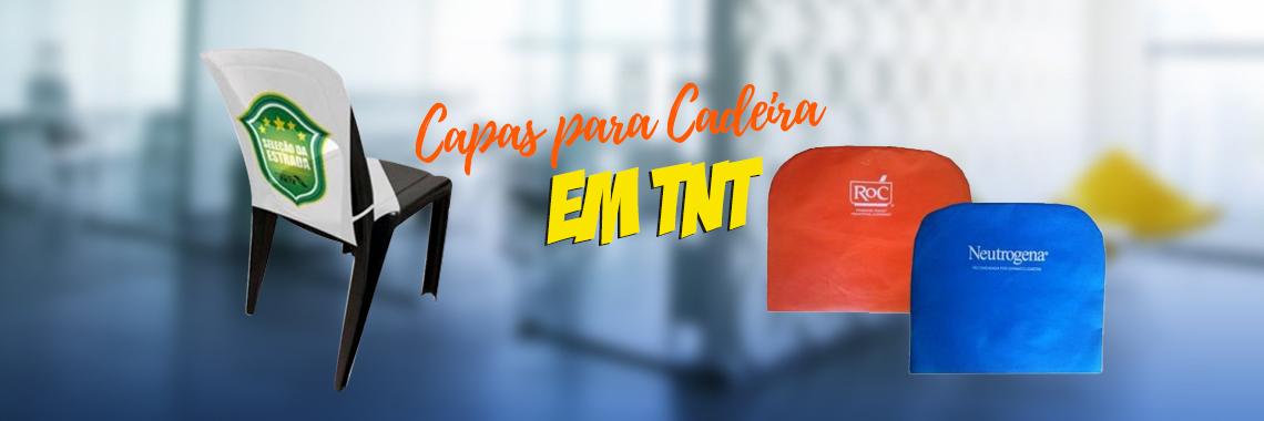 Capas para Cadeira em TNT